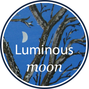 Luminous Moon Web Presence